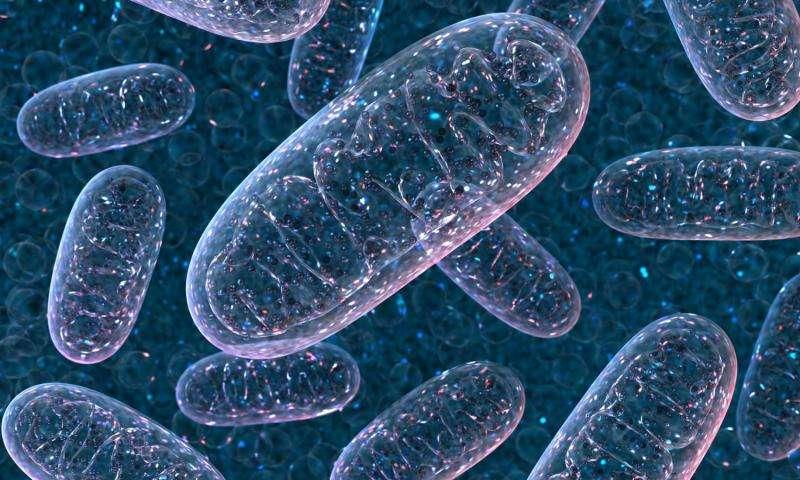 teori tentang sel