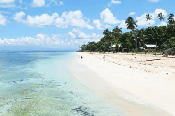 pantai lingkungan hidup alami