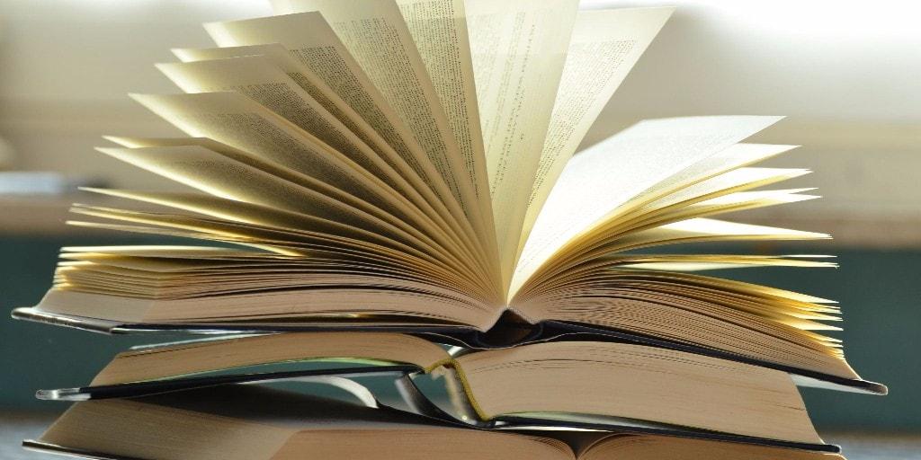 apa itu novel