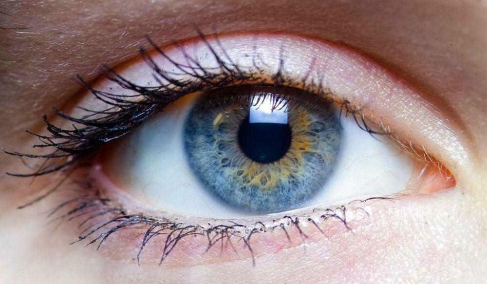 apa itu mata manusia