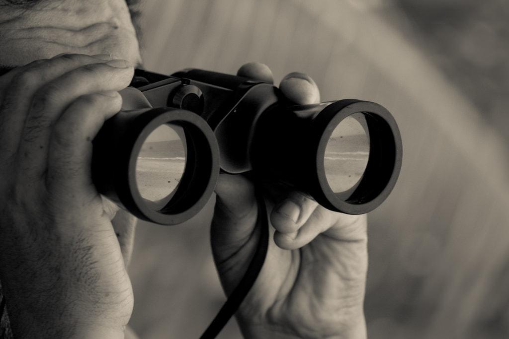 Apa itu Teks Laporan Hasil Observasi dan Contohnya?