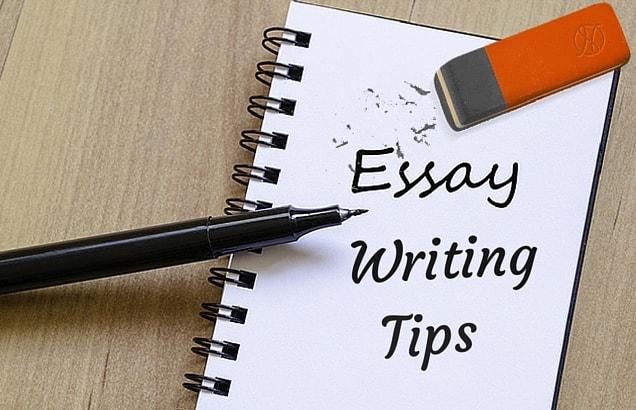 cara menulis teks essay