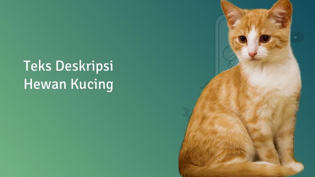 contoh teks deskripsi hewan kucing