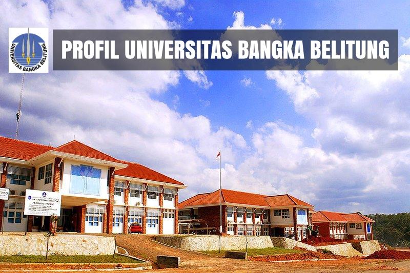 profil kampus ubb